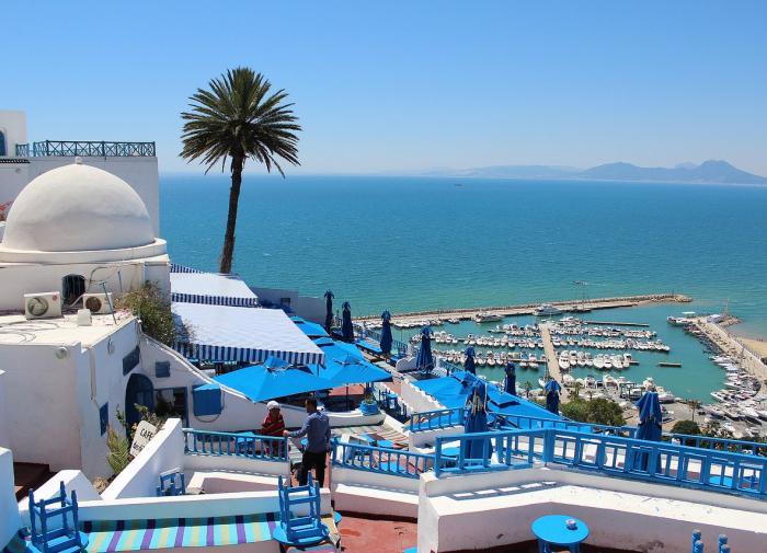 Тунис предложил возобновить чартерные рейсы с Россией