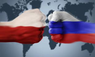 Польский эксперт: у нас появились компаньоны по сумасшествию