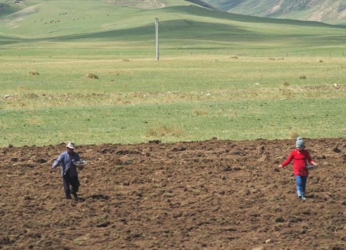 """Китайская провинция """"отвоевала"""" более 570 тыс. га земель у пустыни"""
