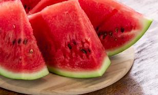 Все о сорте арбуза Сахарный малыш