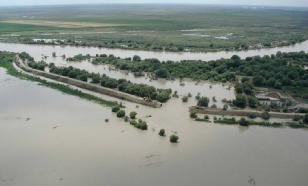 Амур уходит: уровень воды рядом с Хабаровском начал снижаться