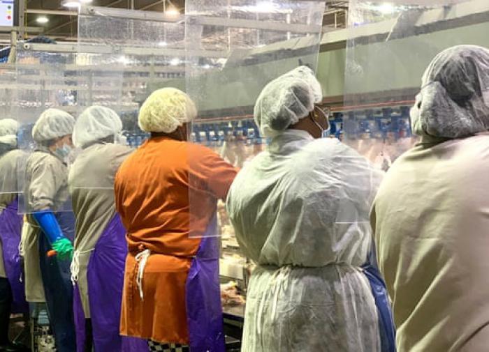 Китай приостанавливает импорт мяса птицы из США