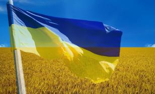 Депутат Рады рассказал, во что власти превратили земельную реформу