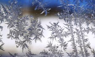 Автобус с туристами застрял на трассе в снежную бурю под Челябинском