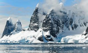 Под ледником Антарктиды обнаружили неизвестных существ