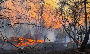 Лесные пожары в Чернобыльской зоне не утихают