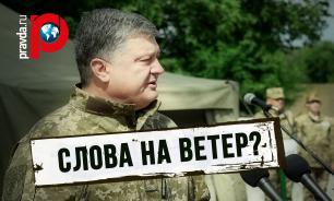 Верховная Рада планирует реинтеграцию Донбасса: Слова на ветер?