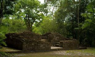 В джунглях Гватемалы найдены десятки городов исчезнувшей цивилизации