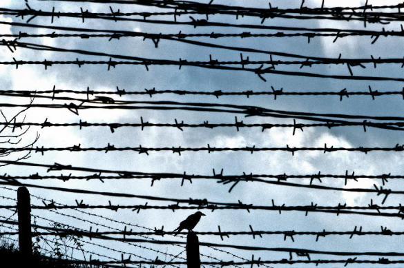 ОНК Москвы: поиски решений в медобеспечения заключенных