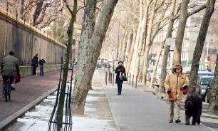Резкое потепление спрогнозировано в Москве