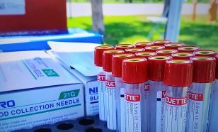 Количество заболевших коронавирусом в мире достигло 25 млн человек