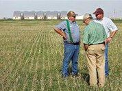 Рост цен на кукурузу спровоцирует народные волнения - прогноз