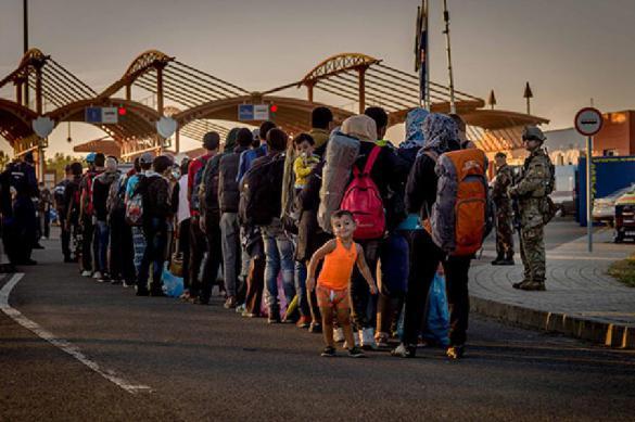 Бегут через Польшу: 10 тысяч мигрантов из Белоруссии пытаются попасть в ЕС