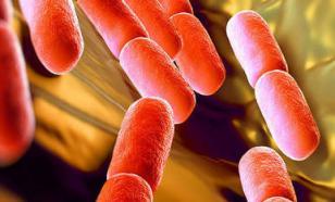 Кисломолочный иммунитет