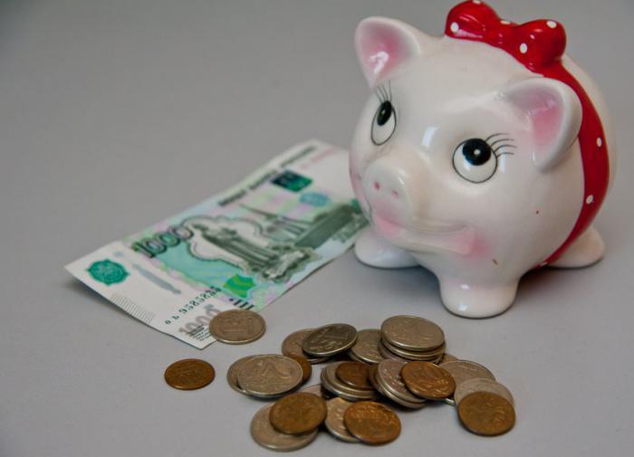 Достойную пенсию можно обеспечить только за счёт собственных накоплений