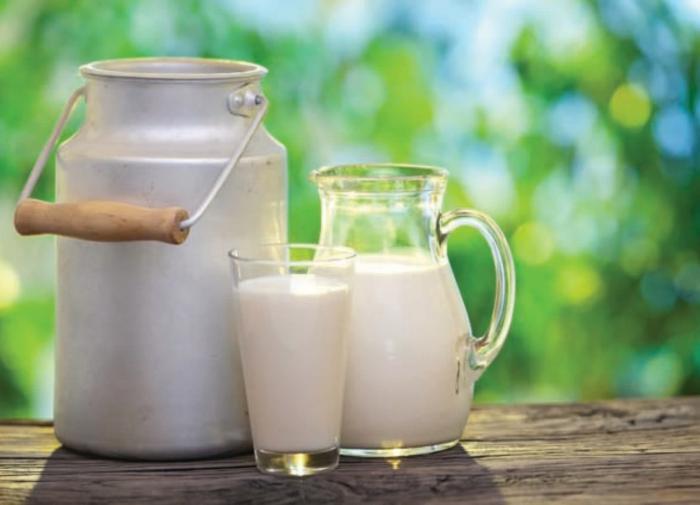 Батл: магазинное молоко против домашнего - кто победил