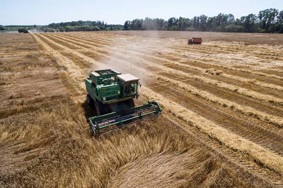 В 2019 году ущерб сельскому хозяйству РФ от ЧС составил 9,5 млрд рублей