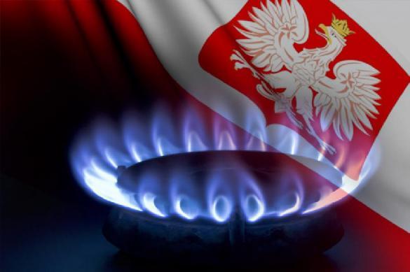 Польша будет торговать сжиженным газом из США в Азии и Южной Америке