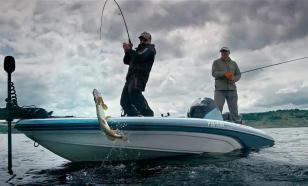 Россия увеличила объем вылова рыбы на 5,5%