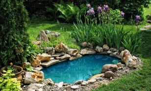 Применение старой ванны на даче