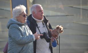 Здоровье мозга пожилых людей зависит от социального взаимодействия