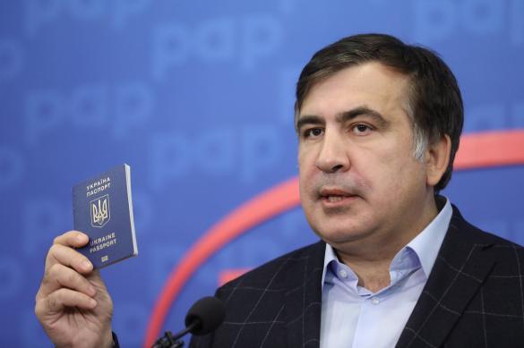 Политик: назначение Саакашвили – идея не Зеленского
