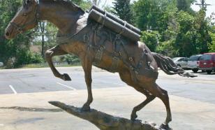 Лошади – участники Великой Отечественной войны