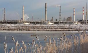 В РФ ущерб от нефтепродуктов экологии за год вырос в пять раз