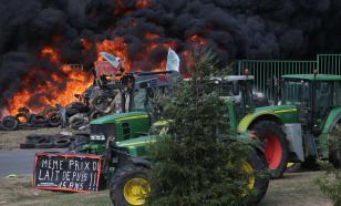 Бастующие французские фермеры согласились разблокировать границу с Германией