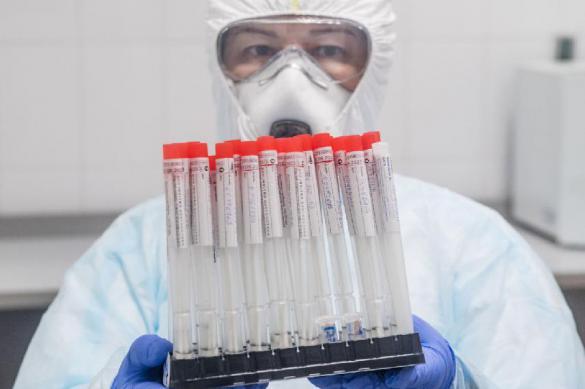 Тест-системы определяют коронавирус с 95-процентной точностью