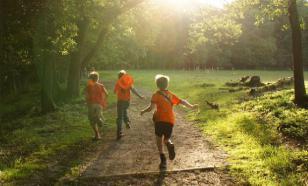 Прогулка в лесу полезна для здоровья и самочувствия