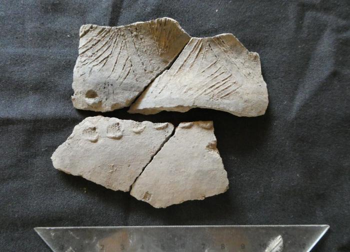 Эквадор: найдены предметы неизвестной ранее культуры