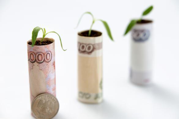 Малый и средний бизнес России поддержат на два миллиарда рублей