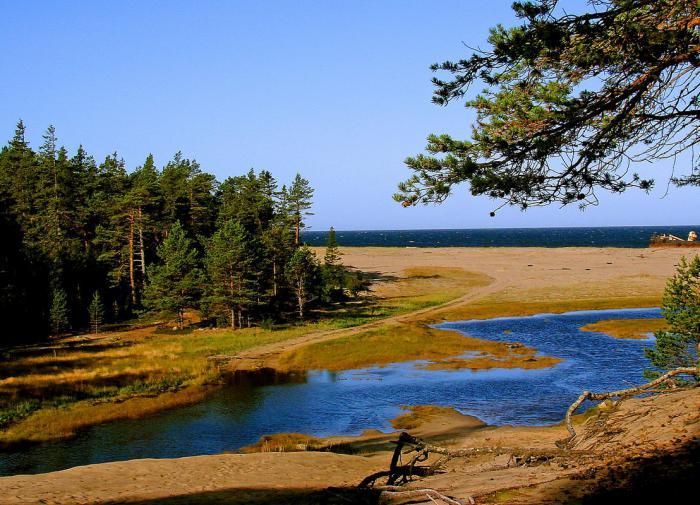 В Архангельской области появился парк