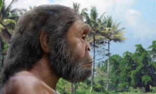 Палеонтологи установили точный период вымирания питекантропов