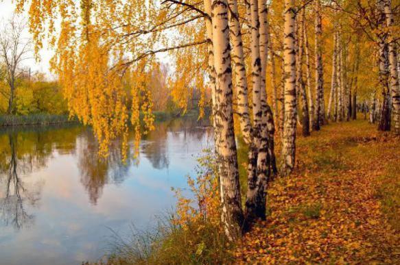 Гидрометцентр: в европейской части РФ сентябрь будет теплее обычного