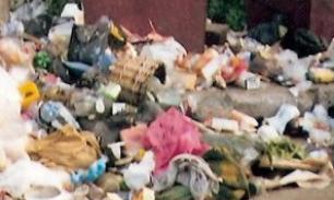 Бизнес на мусоре: Отходы в доходы