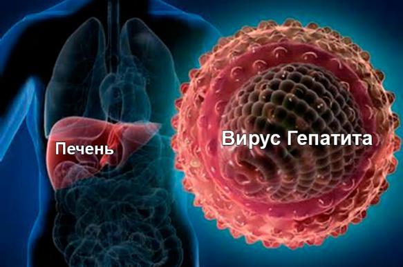 Гепатит С сдается новым препаратам