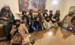 Талибы* назвали Китай основным партнёром Афганистана