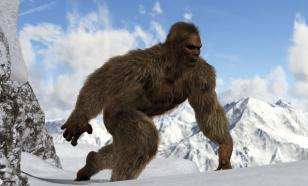 """В Китае началось расследование загадочного происшествия - в лесах в центральной части страны несколько человек видели мифическое """"обезьяноподобное"""" существо. Об этом сообщает китайское государственное информационное агентство Xinhua."""