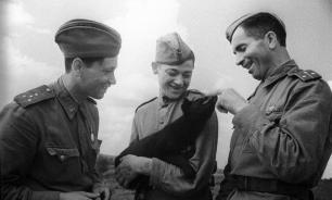 Трогательные военные истории от которых  веет холодом. Часть 2.