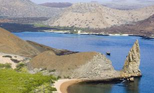 Раскрыт секрет уникальности экосистемы Галапагосских островов