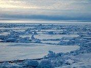 Возвращение в Арктику: набег или обустройство?