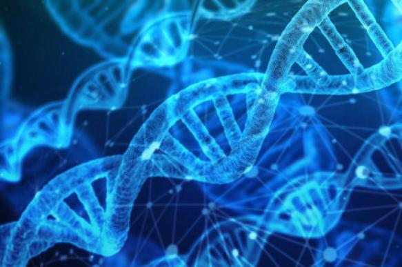 В США начнут собирать ДНК у задержанных миграционной службой