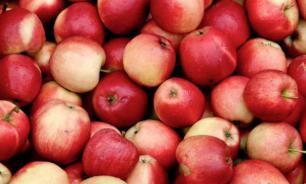 Дизайнер из Швейцарии делает сумки из отходов яблок