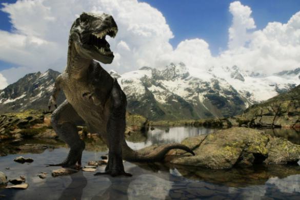 Что нового мы знаем про динозавров