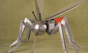 Инженеры объяснили, почему создают роботов в виде насекомых
