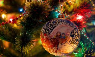 Житель Ярославской области на спор залез на новогоднюю ель и сорвался