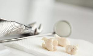 Стоматолог пытался вывезти на Украину из России более 900 зубов