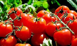 Врач-диетолог рассказала, кому нельзя есть помидоры